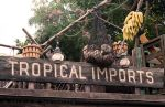 Tropical Imports by jdrainville