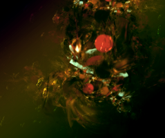 Misunderstood by portwolf