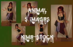 Animal by kime-stock
