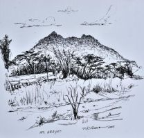 pen and ink drawing Mt Arayat by TomKilbane