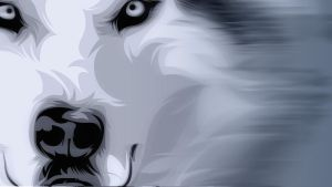 Wolf Vector Wallpaper ++ speed art by elatik-p