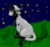Request from SilverWing15: Silverwing by CastielPanda