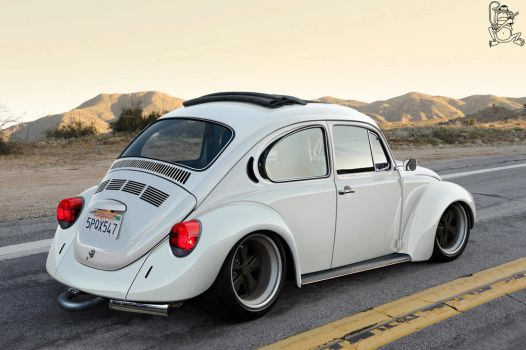 Californian Beetle by ChitaDesigner