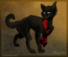 Black Paw by Quckie