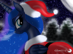 Frosty night by Groovebird