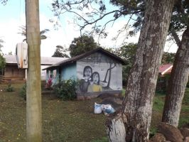 Mural at Easter Island by JohnRobertPosey