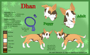 Dhan_Character sheet by Aquene-lupetta