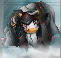 Wet Shadow by CofL-fee