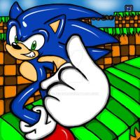 running throw Green Hill Zone  XD by SONICJENNY