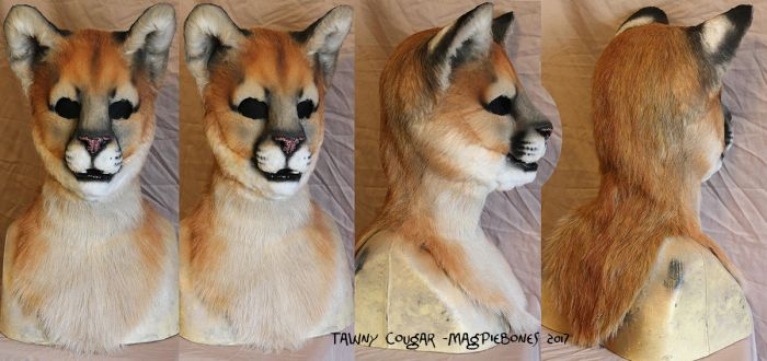 Tawny Cougar by Magpieb0nes