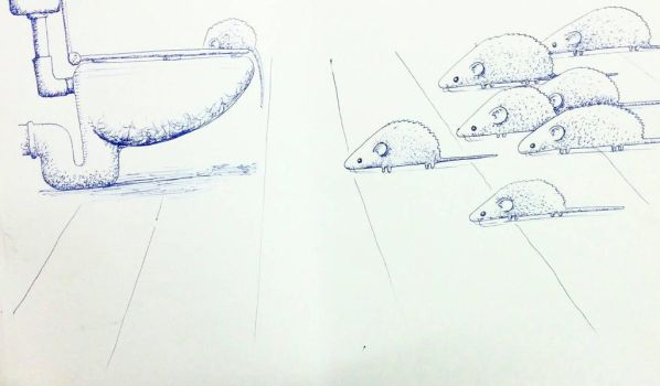 rats heading for the toilet by chaitanyak