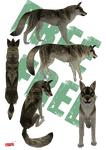 FREE WOLF PRESET by ToXiC-Red-Wolf