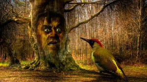 Mutant woodpecker by Paulus1962