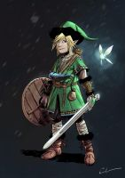 Character Design Challenge - Legend of Zelda by Syrphin