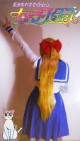Pretty Guardian Sailor Venus by FuzzyMoguai