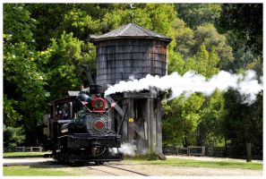 Roaring Camp Steam Train by Teena-Marie