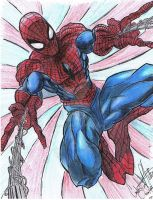 Spiderman by CJRogue