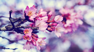 The Time Has Come by atLevel1Alt