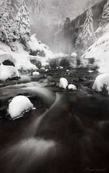 At the Heart of Winter by alexandre-deschaumes