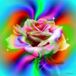 Mix color for the rose by Mladavid