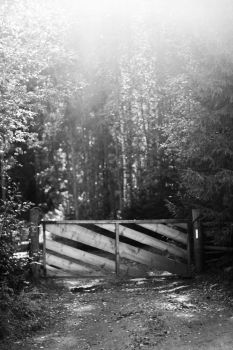 A fence by Melissa-Cupcake