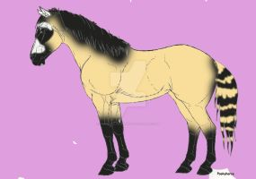 Coon horse mutation by whenwolveshowl