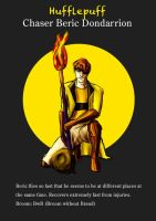Beric Hufflepuff Chaser by guad