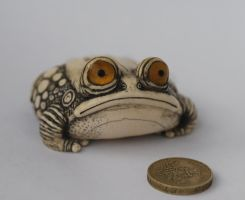 poor toad by McCaren