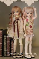 Dollmeet Fat Dragon: Vintage Library by darknaito