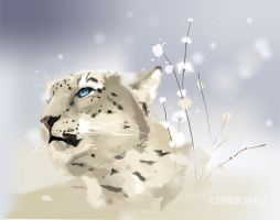 snow leopard by imlineking