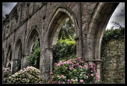 HDR Abbey Arches by GeckoHippy