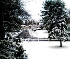 Winter  by Alrine21XE