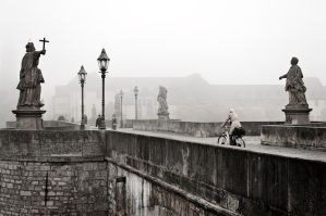nebel_in_wuerzburg_II by fal-name