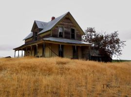 Cold Comfort Farm by TRunna