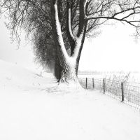 More winter issues II by afewimages