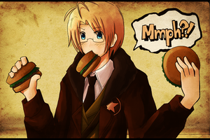APH: America by chienoir