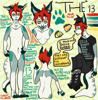The 13's Reference Sheet by TECHNlCOLOUR