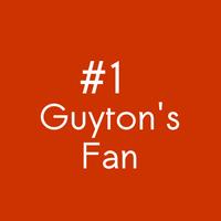I love Guyton by sejomagno