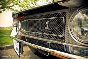 orange g.t. 350 grille by AmericanMuscle