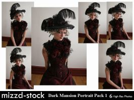 Dark Mansion Portrait Pack 1 by mizzd-stock