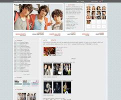 New wordpress layout by ooliyah