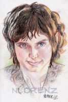 Frodo Baggins - Colour by napalmnacey