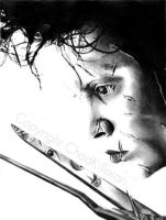 Edward Scissorhands by ChadKilloran