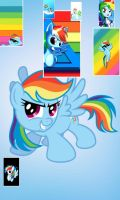 Rainbow Dash Collage by Shimmerkat