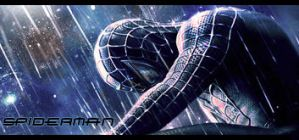 Spiderman Signature by Fr1X