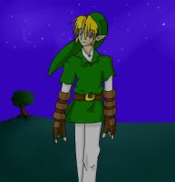 Link at Night by brigette
