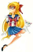 Sailor V by Tabascofanatikerin