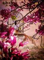 The cage by annewipf