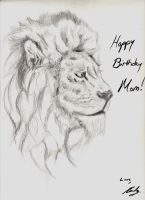 Birthday Picture (crappy sketch) for My Mom by Randy-Ghoti