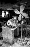 The Oldest And Biggest Fan by Hertz18360